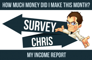income-report-screenshot